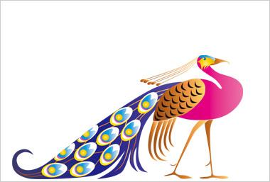 孔雀のイラスト